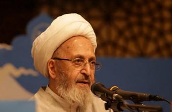 آیت الله سبحانی: تدریس نظریه داروین باید در ایران متوقف شود