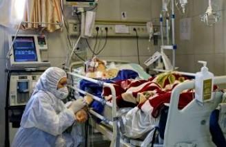 کرونا جان ۱۴۴ نفر دیگر را در ایران گرفت