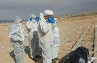 ۱۳ استان ایران در وضعیت هشدار کرونا قرار گرفته اند
