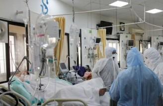 ۴۹۸۲ نفر از مبتلایان به کرونا در وضعیت شدید بیماری قرار دارند
