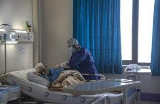 ۳۹۶۴ نفر از مبتلایان به کووید۱۹ در شرایط وخیم بیماری قرار دارند